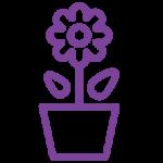noun_Plant_582991_000000